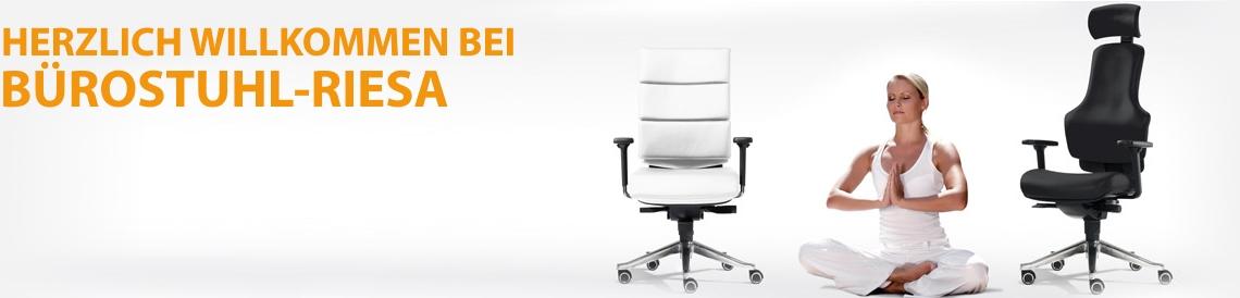 Bürostuhl-Riesa - zu unseren Chefsesseln